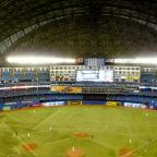 Blue Jays: 21 facts you need to know